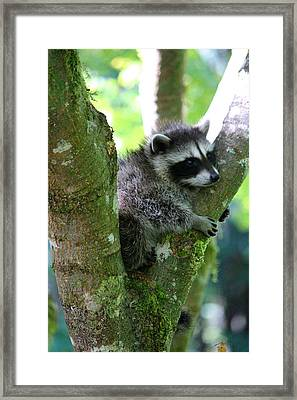I'm Staying Right Down Here Framed Print