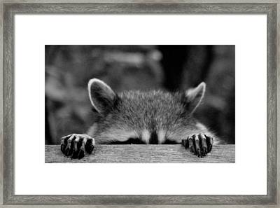 I'm Sure She Can't See Me Framed Print by Kym Backland