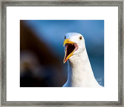 I'm Talking To You Framed Print by Dale Nelson