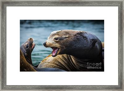 I'm The Boss Framed Print by David Millenheft