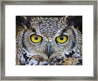 I'm Watching You Framed Print by Heather King