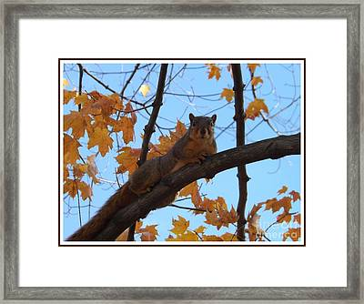 I'm Watching You Framed Print by Sara  Raber