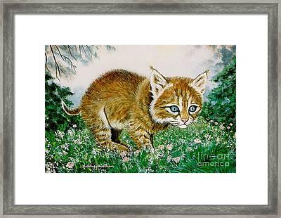 Ima Bobkitty Framed Print by DiDi Higginbotham