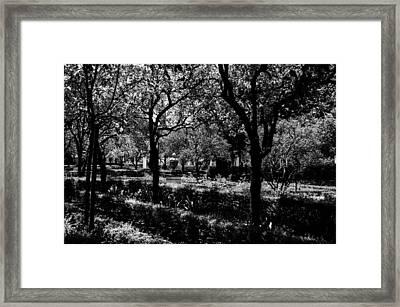 Imaginaerum Framed Print