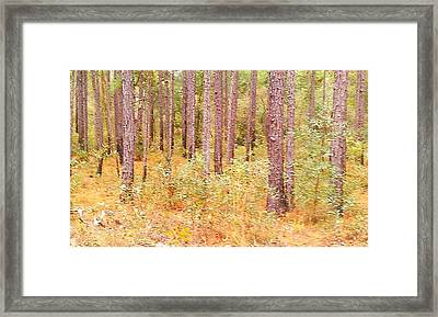 Imaginary Forest Framed Print by Fortunate Findings Shirley Dickerson