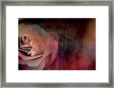 Imagination In Bloom Framed Print