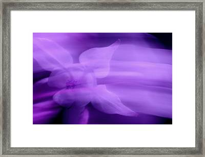Imagination In Purple Framed Print