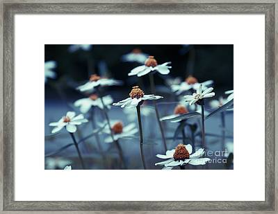 Imagine F03a Framed Print by Variance Collections