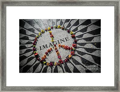 Imagine Peace Framed Print by Stacey Granger