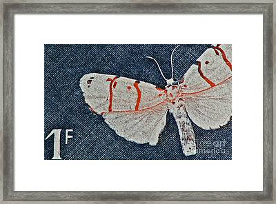 Imago Framed Print by Andy Prendy