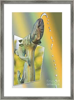 Img 78 Framed Print