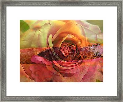 Immersed Framed Print by Shirley Sirois