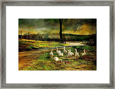 Immigration Framed Print by Diana Angstadt