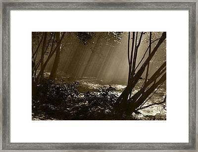 Imminent Apparition Framed Print by Simona Ghidini