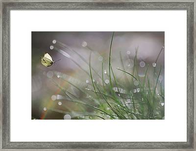 Imminent Landing Framed Print