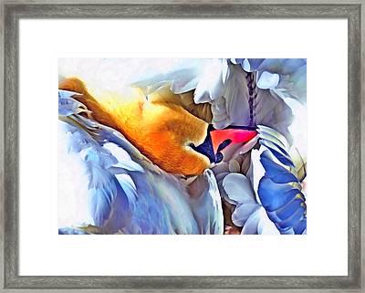Immortal Swan Framed Print