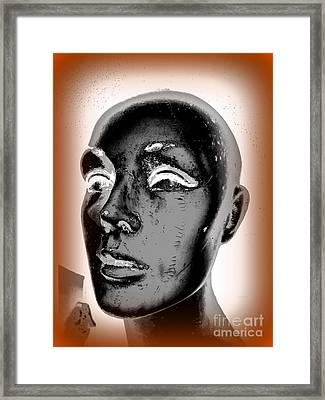 Imperfect Beauty Framed Print by Ed Weidman