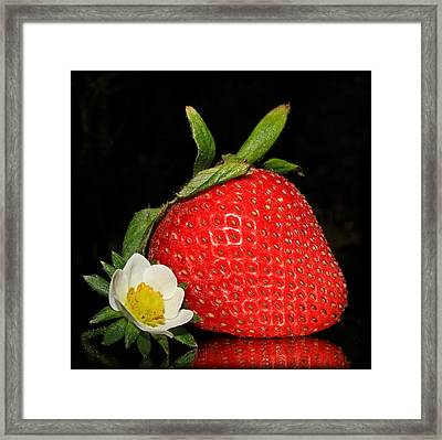 Imperfection Is Beautiful... Framed Print