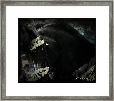 Imperial Friesian Framed Print by Royal Grove Fine Art