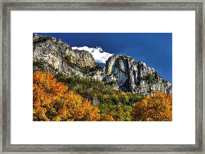 Imposing Seneca Rocks - Seneca Rocks National Recreation Area Wv Autumn Mid-afternoon Framed Print by Michael Mazaika