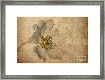 Impression Framed Print by John Edwards