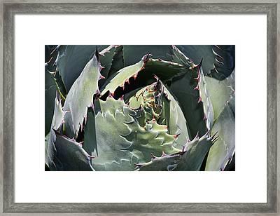 Impression Framed Print by Kelley King