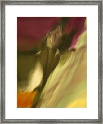 Impression Of A Rose Framed Print