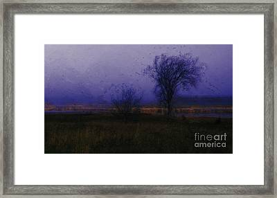 Framed Print featuring the photograph Impressionist Landscape by Julie Lueders