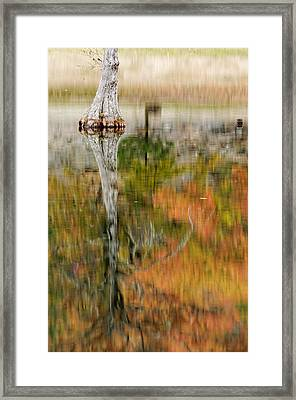 Impressionist Reflection Of Fall Colors Framed Print