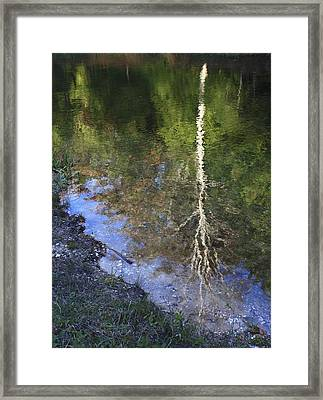 Impressionist Reflections Framed Print by Patrice Zinck