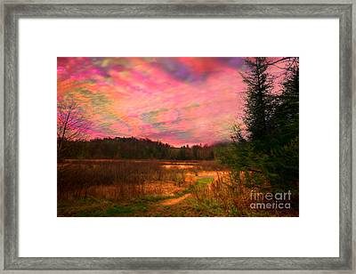 Impressionistic Morning View Of West Virginia Botanic Garden Framed Print by Dan Friend