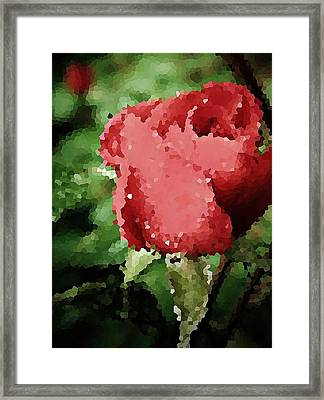 Impressionistic Rose Framed Print by Chris Berry