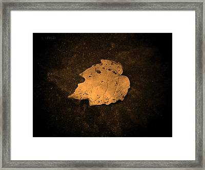 Impressions Framed Print by Chris Berry