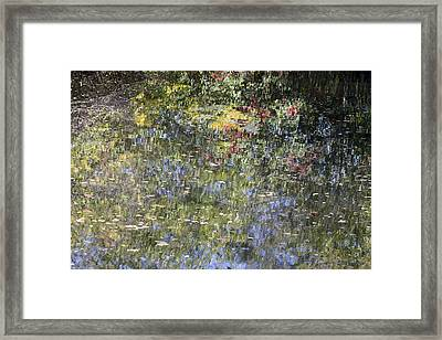 Impressions Of Autumn Framed Print by Andrew Pacheco