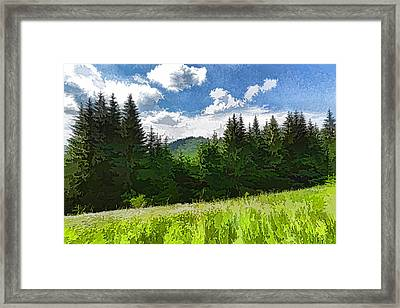 Impressions Of Mountains And Meadows And Trees Framed Print by Georgia Mizuleva