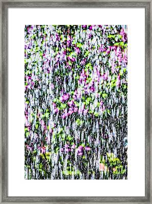 Impressions Of Spring 1 Framed Print