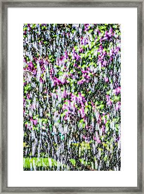 Impressions Of Spring 2 Framed Print