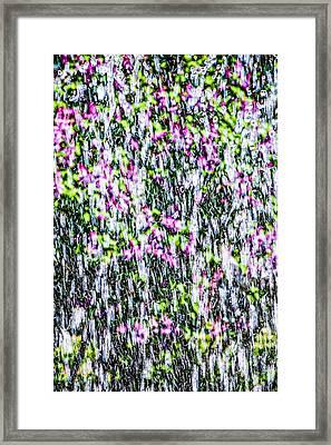 Impressions Of Spring 3 Framed Print