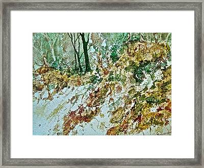 Impressions Of Spring Framed Print by Carolyn Rosenberger