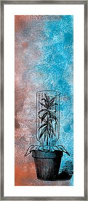 Imprisoned Life Framed Print by R Kyllo