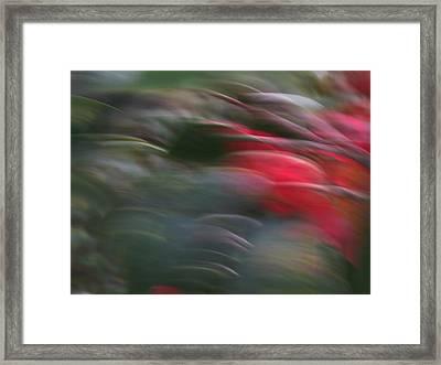Impulsive Framed Print