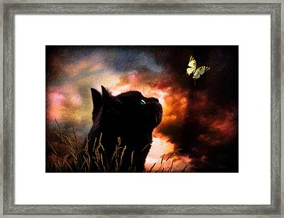 In A Cats Eye All Things Belong To Cats.  Framed Print