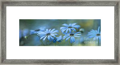 In A Corner Of A Garden Framed Print