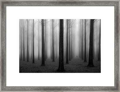 In A Fog Framed Print by Jochen Bongaerts