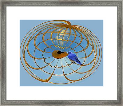 In A Gilded Cage Framed Print by Larry Bishop