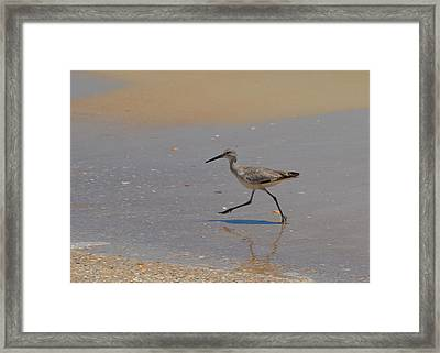 In A Hurry Framed Print by Carla Parris