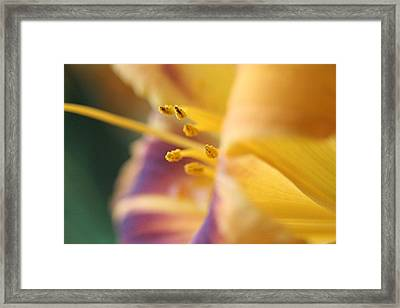 In A Moment Framed Print