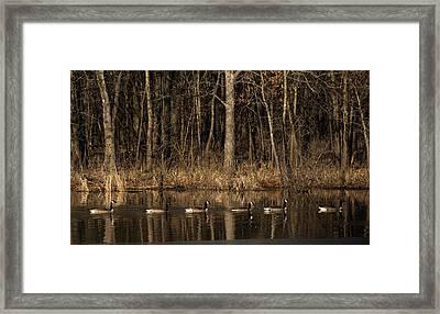In A Row Framed Print