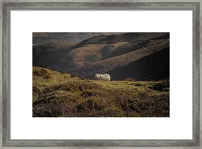 In A Rugged Landscape Framed Print