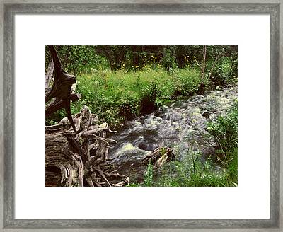 In A Rush Framed Print by SEA Art